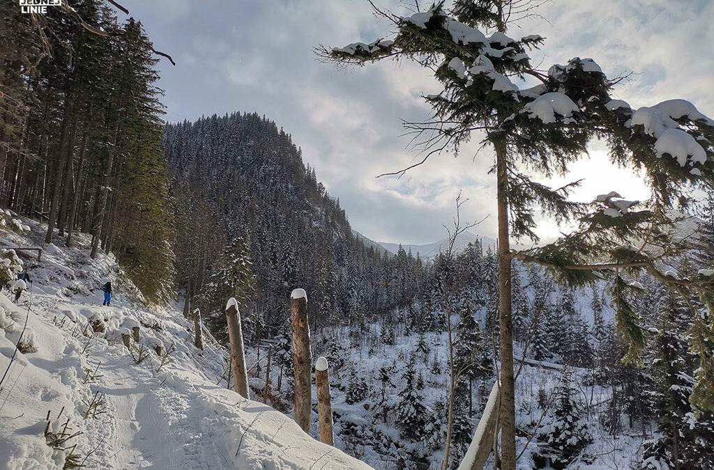 Pierwszy raz na skiturach w Dolinie Goryczkowej