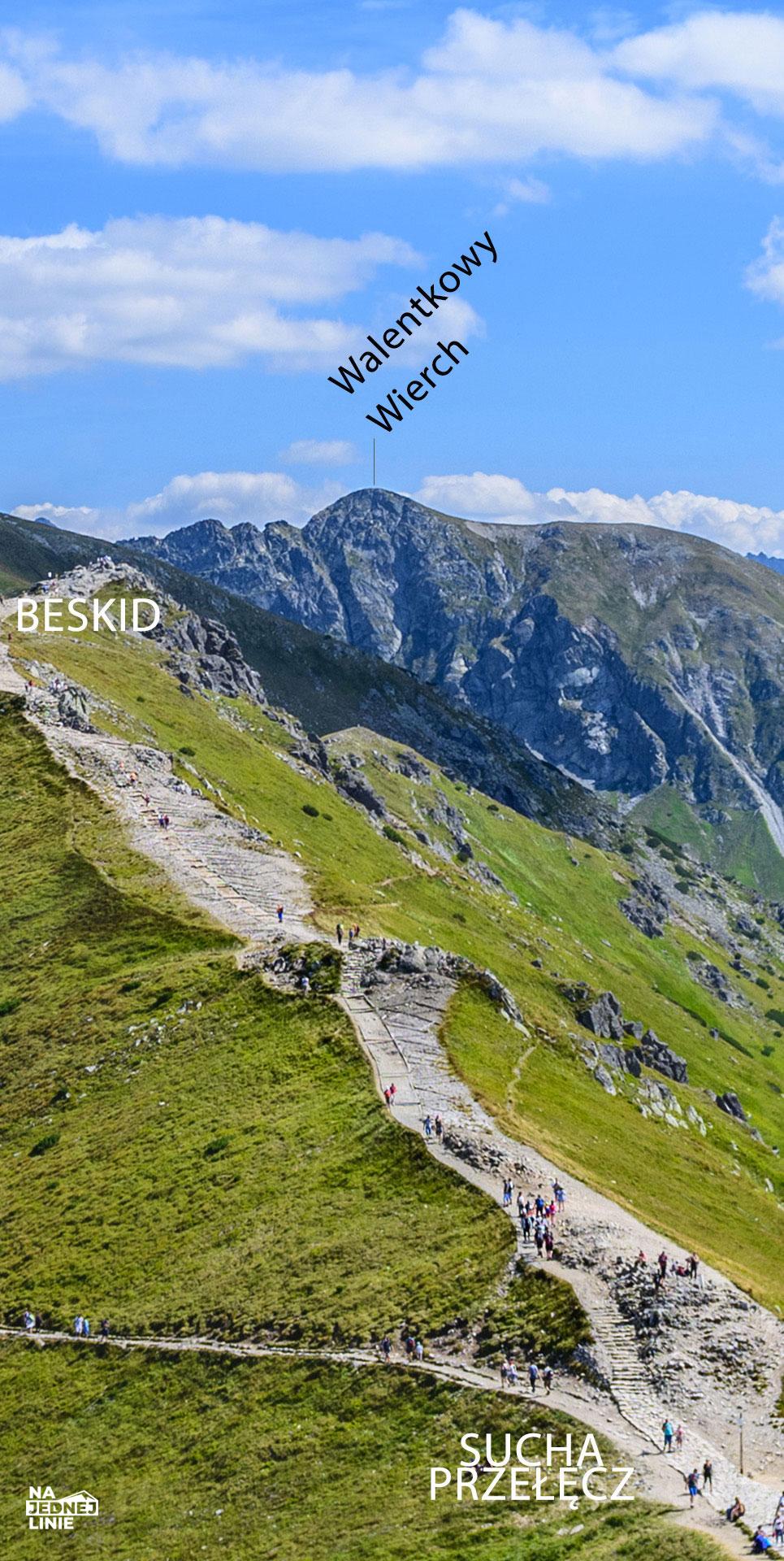 Panorama z Kasprowego Wierchu. Widok na Suchą Przełęcz