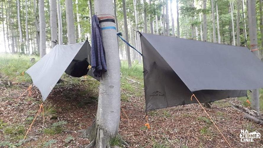 Jak bezpiecznie biwakować w polskich lasach?